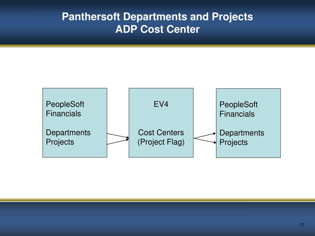 Panthersoft Departments and Projects