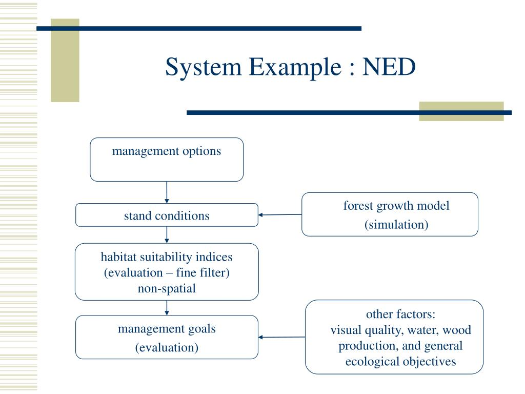 System Example : NED