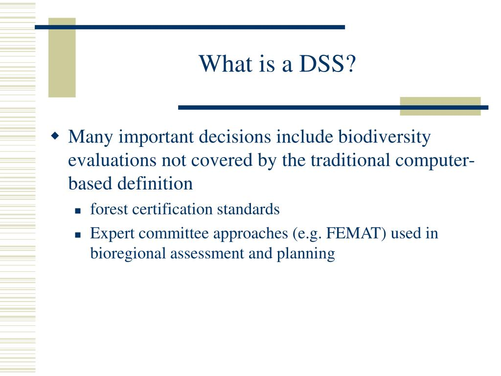 What is a DSS?