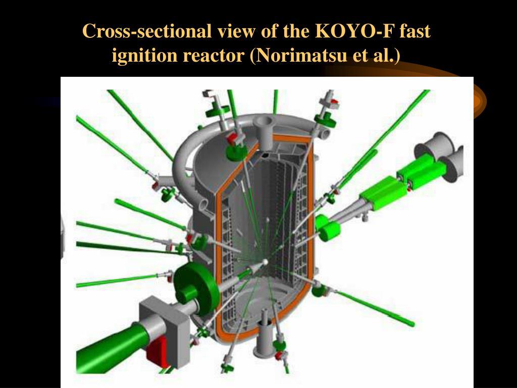 Cross-sectional view of the KOYO-F fast ignition reactor (Norimatsu et al.)