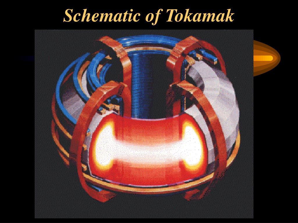 Schematic of Tokamak