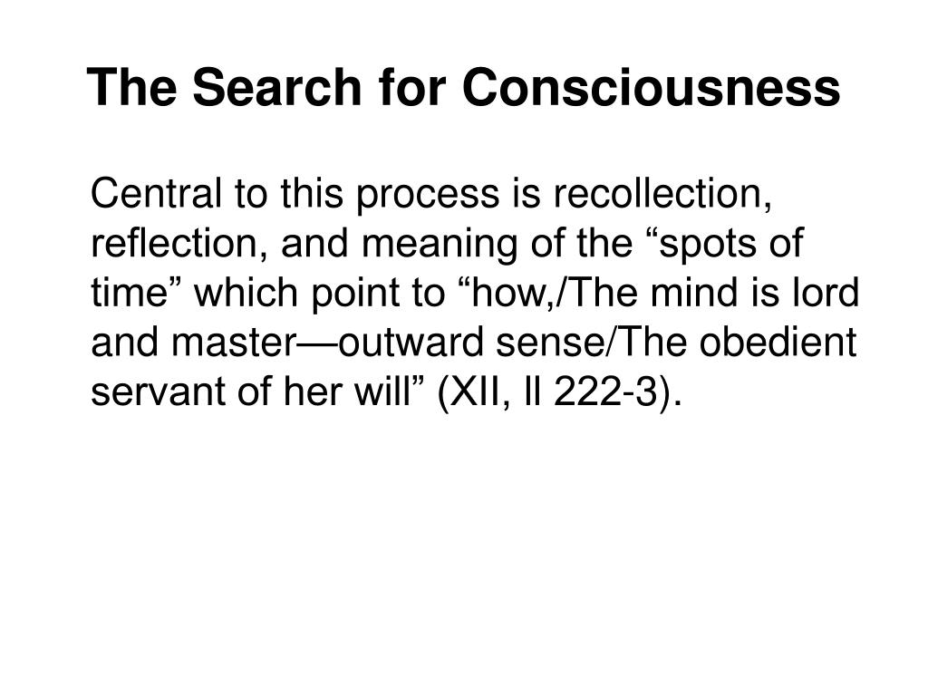 The Search for Consciousness