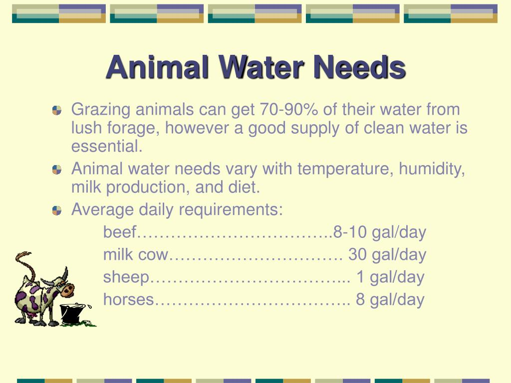 Animal Water Needs
