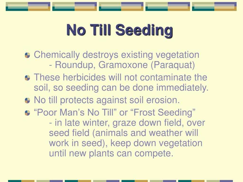 No Till Seeding