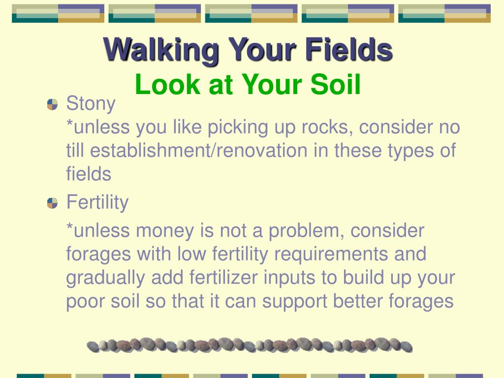 Walking Your Fields