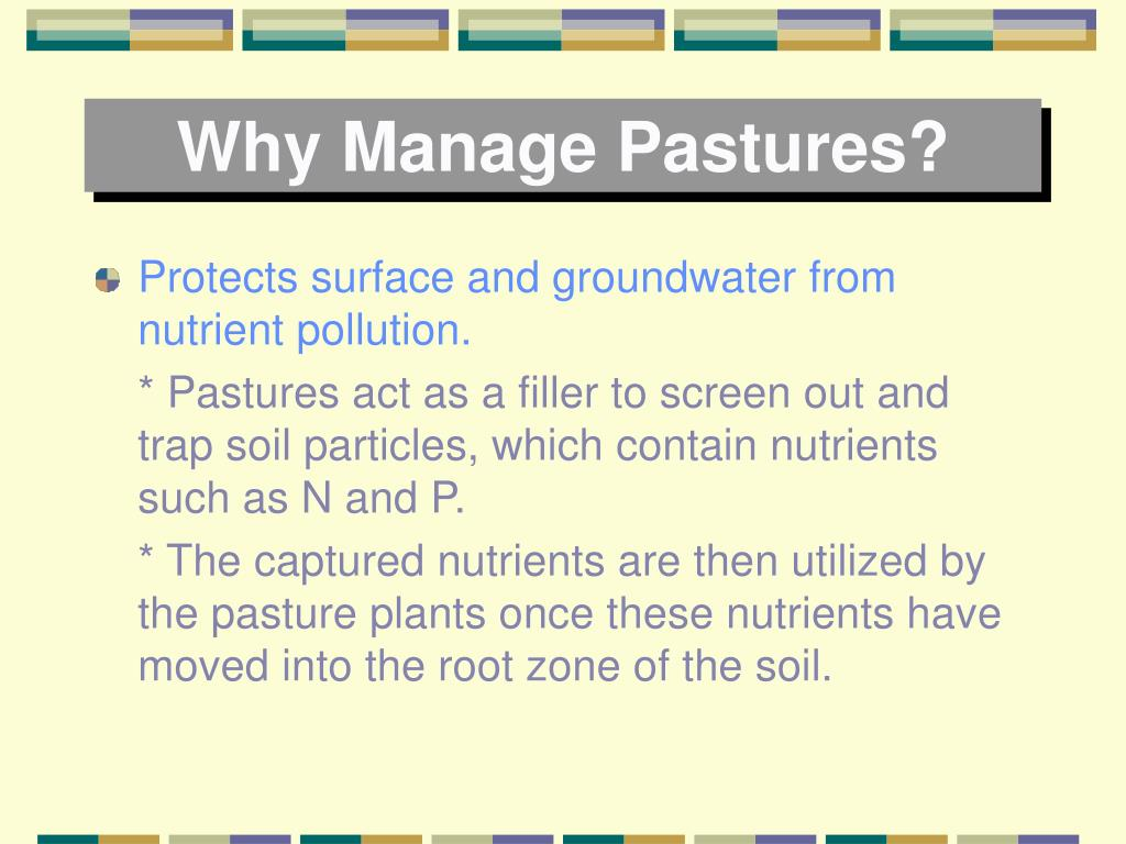 Why Manage Pastures?