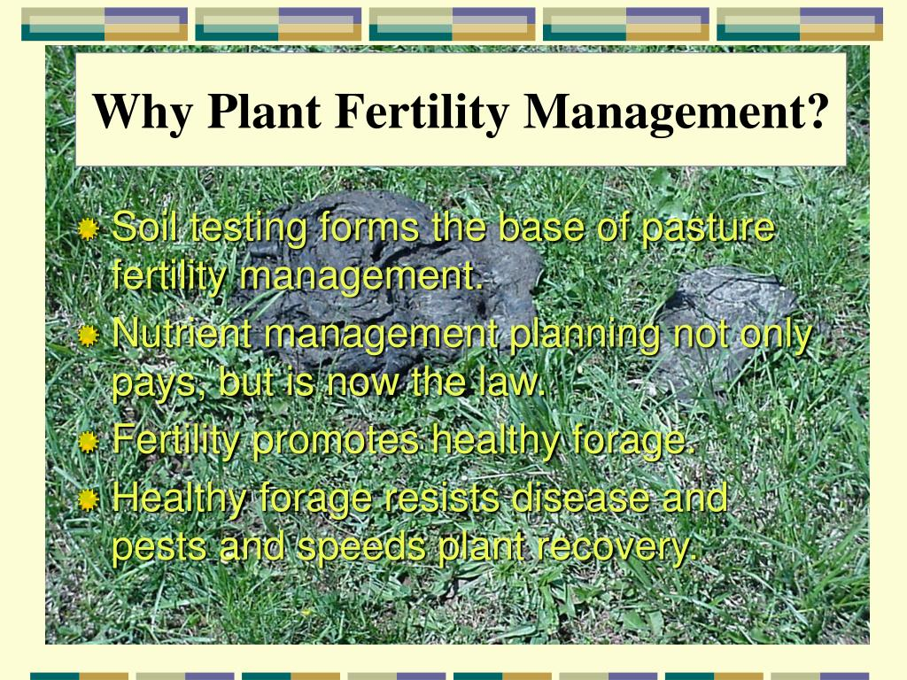 Why Plant Fertility Management?