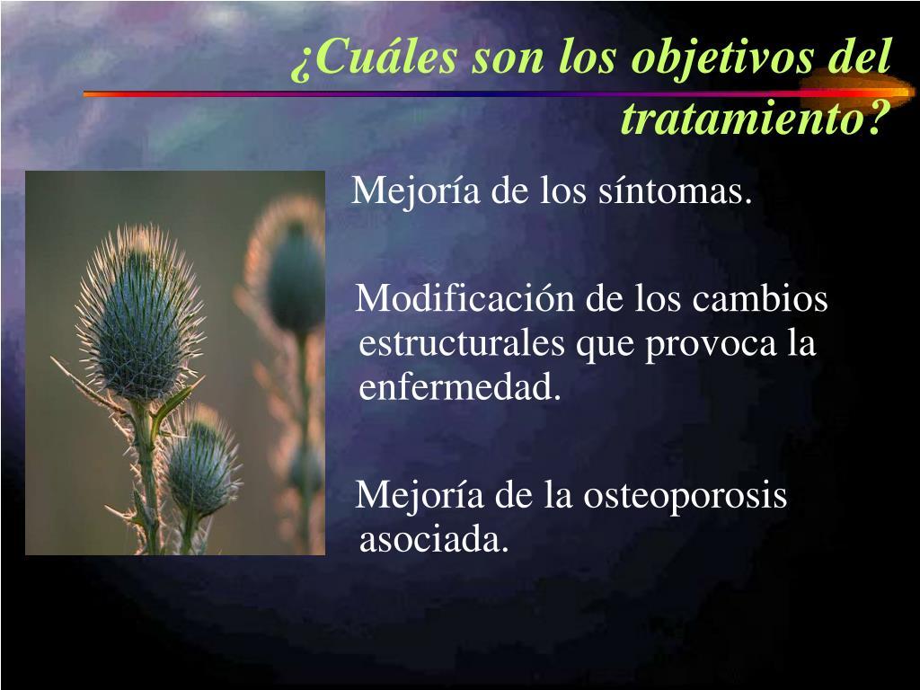 ¿Cuáles son los objetivos del tratamiento?