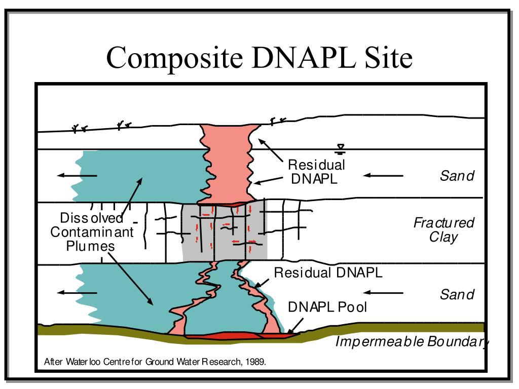 Composite DNAPL Site