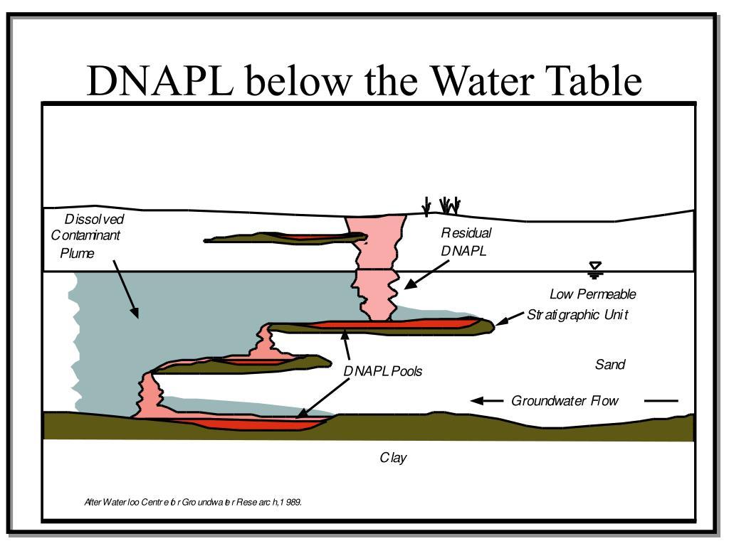 DNAPL below the Water Table