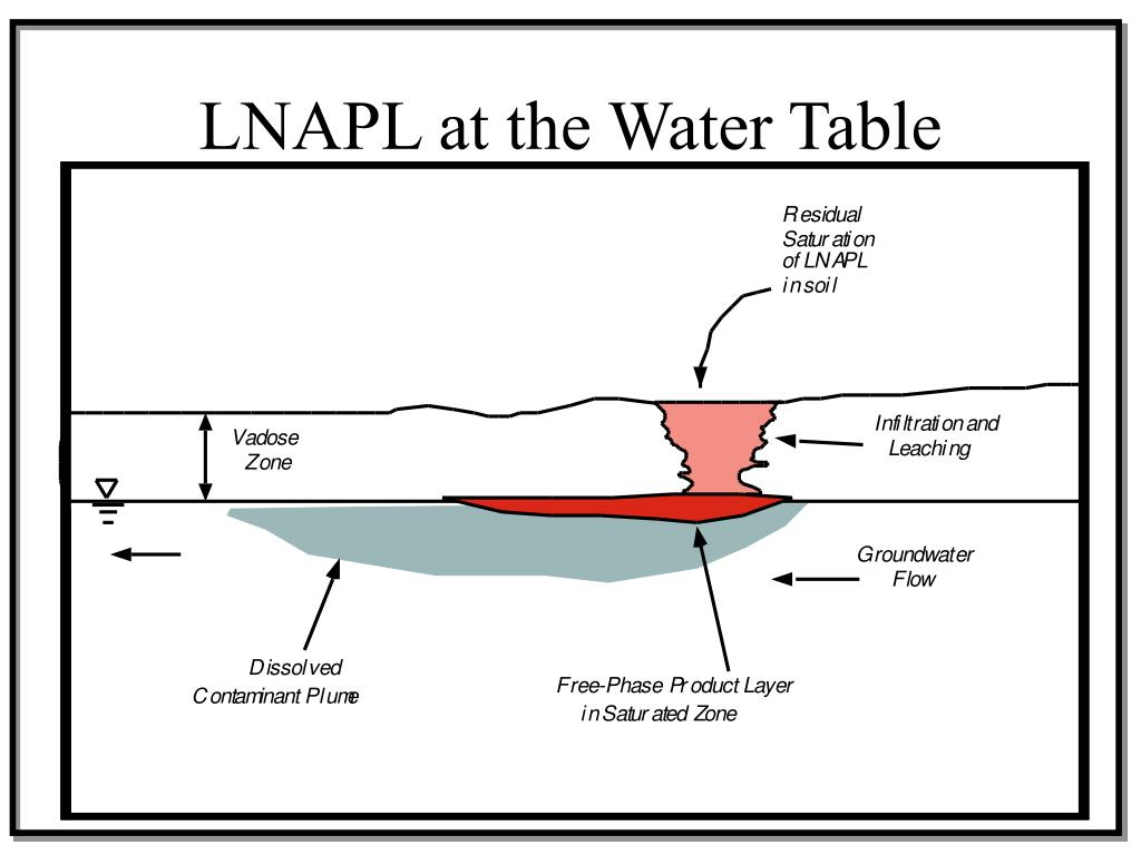 LNAPL at the Water Table