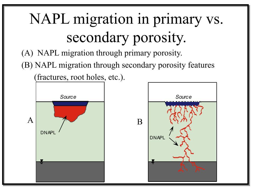 NAPL migration in primary vs. secondary porosity.