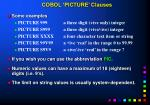 cobol picture clauses