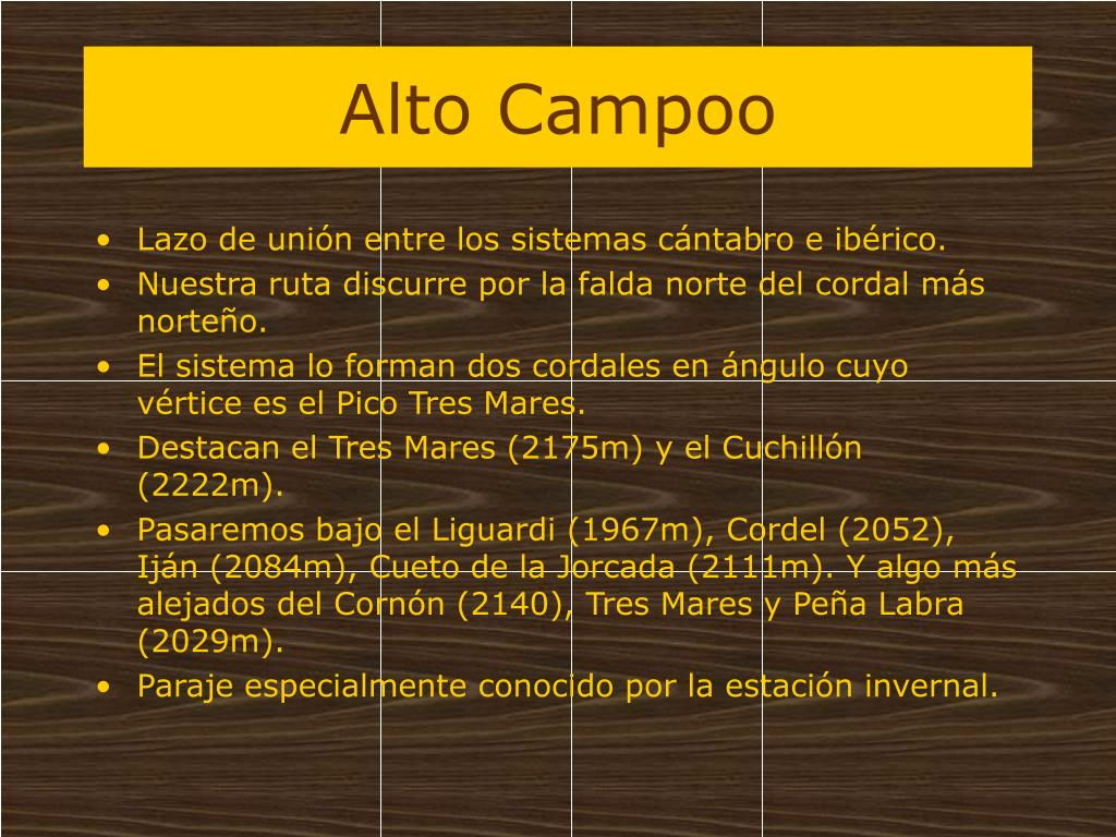Alto Campoo