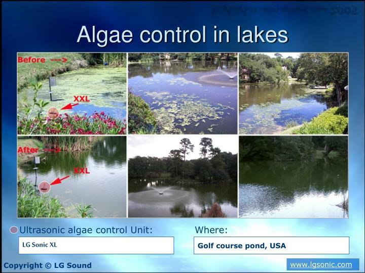 Algae control in lakes