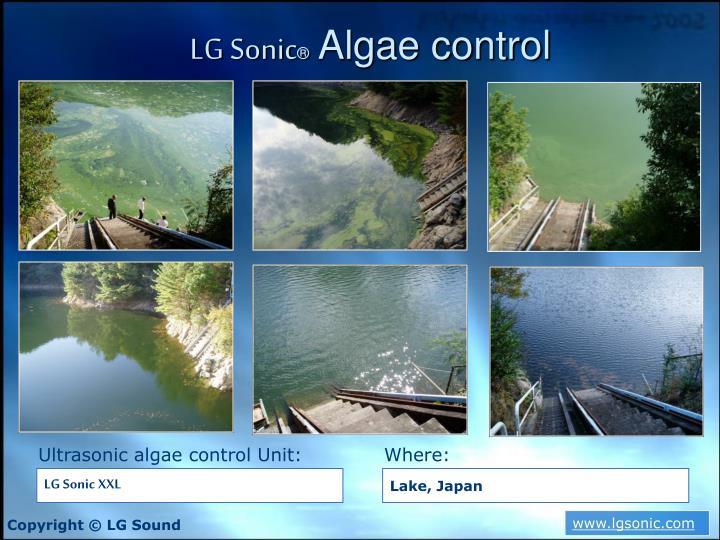 LG Sonic