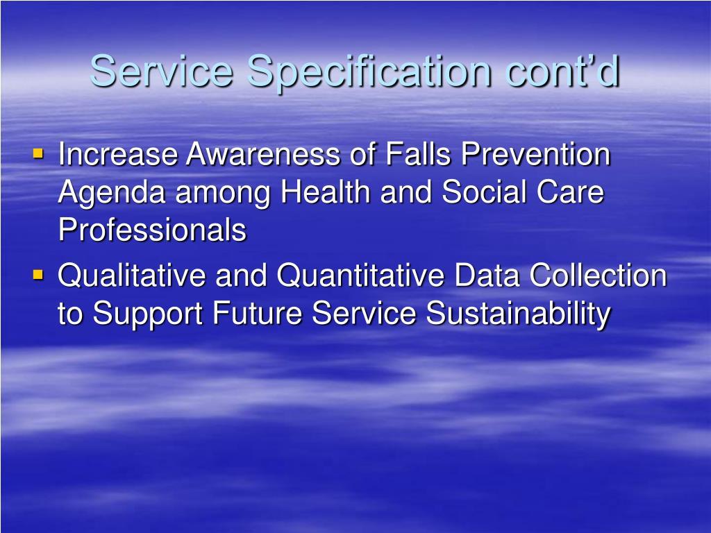 Service Specification cont'd