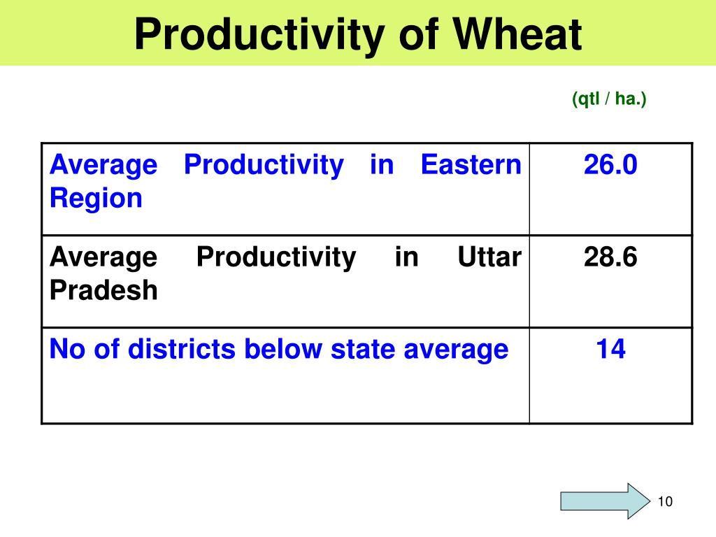 Productivity of Wheat