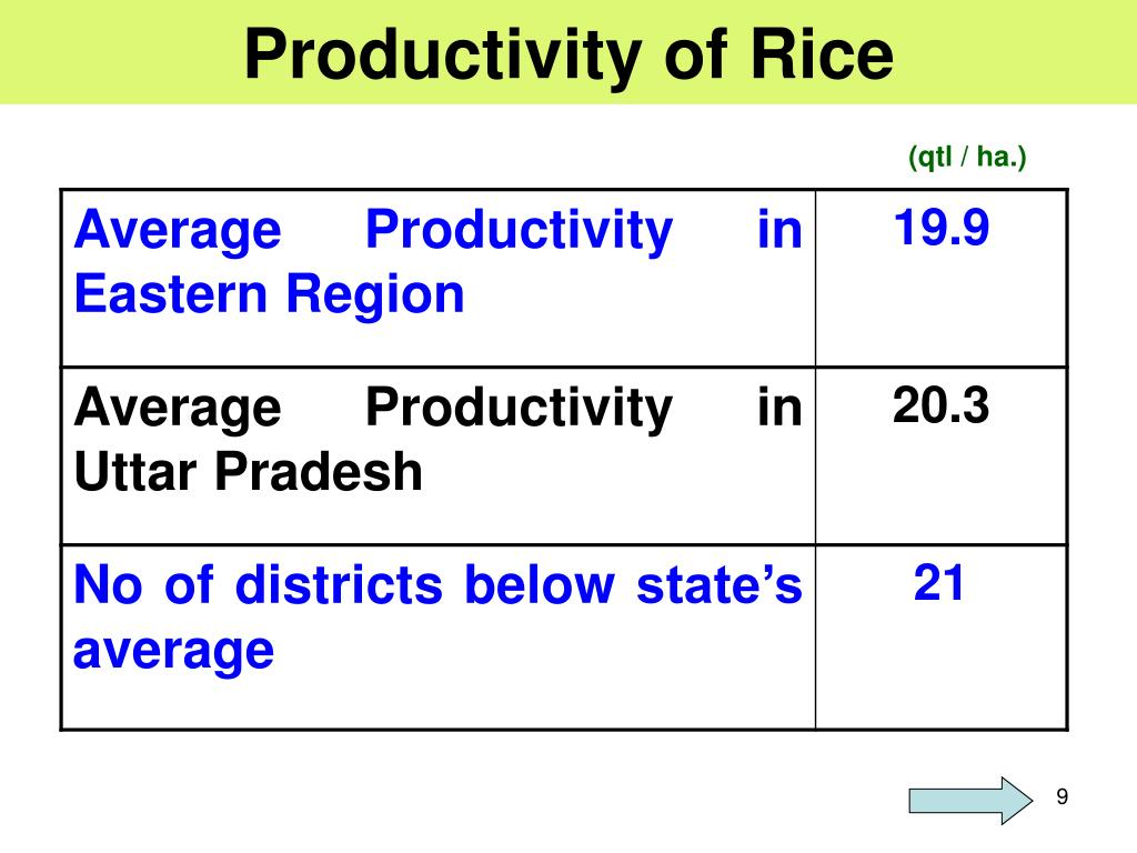 Productivity of Rice