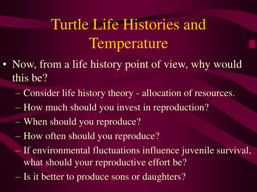 Turtle Life Histories and Temperature