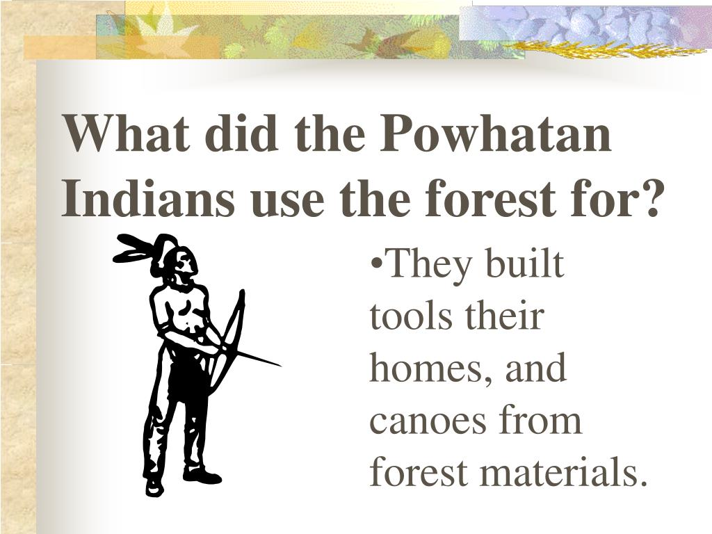 What did the Powhatan Indians use the forest for?