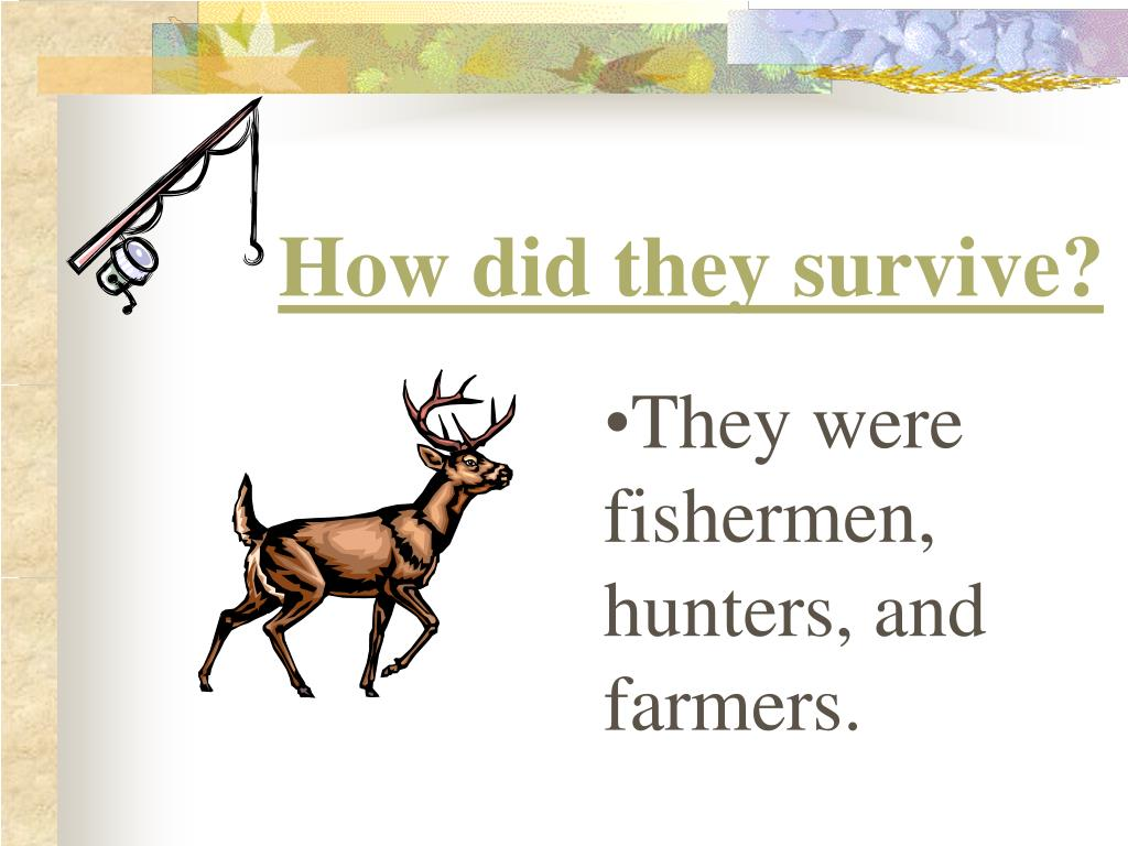 How did they survive?