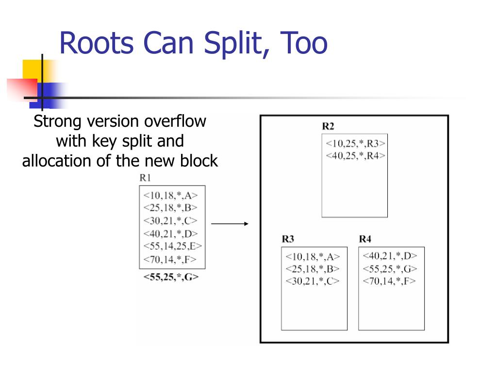 Roots Can Split, Too