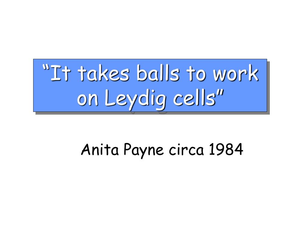 """""""It takes balls to work on Leydig cells"""""""