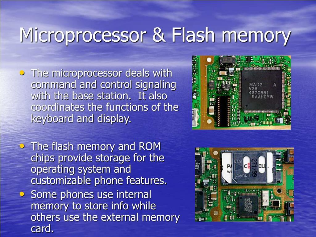 Microprocessor & Flash memory