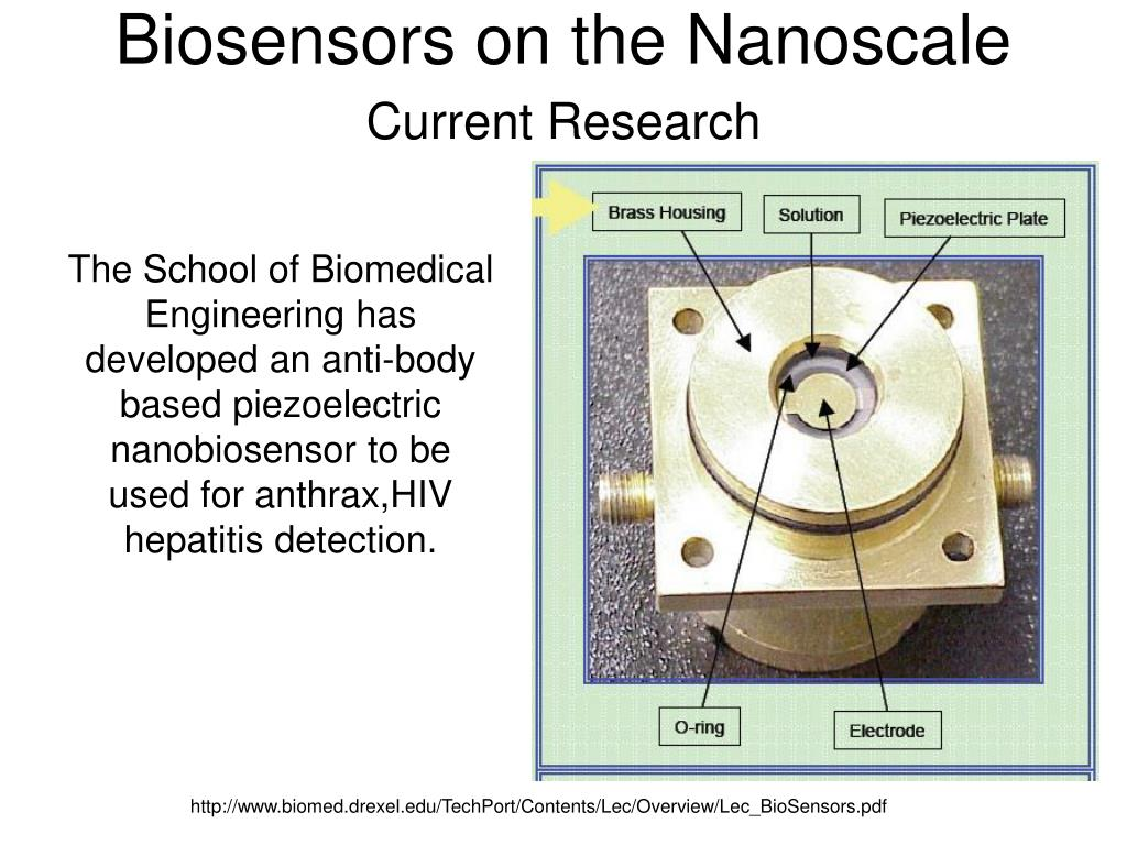 Biosensors on the Nanoscale