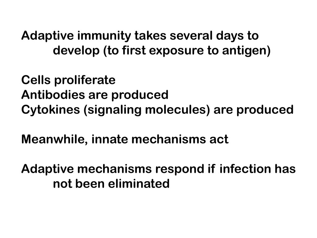 Adaptive immunity takes several days to
