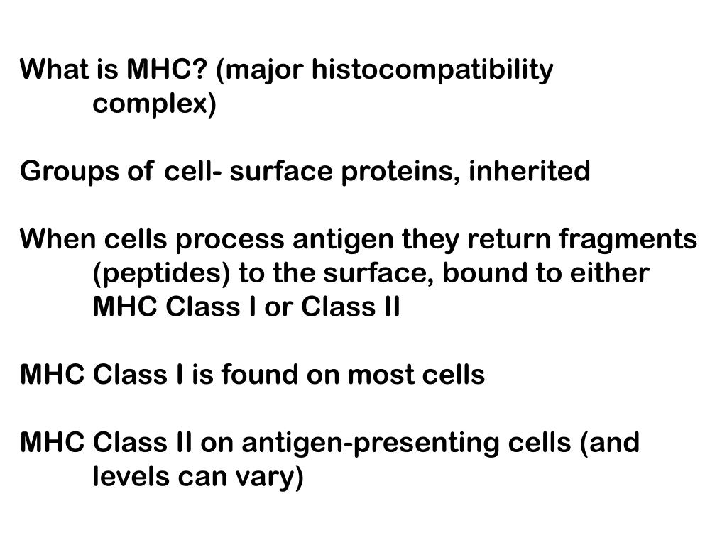 What is MHC? (major histocompatibility