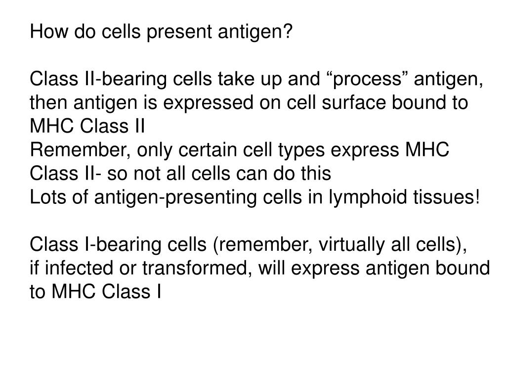 How do cells present antigen?
