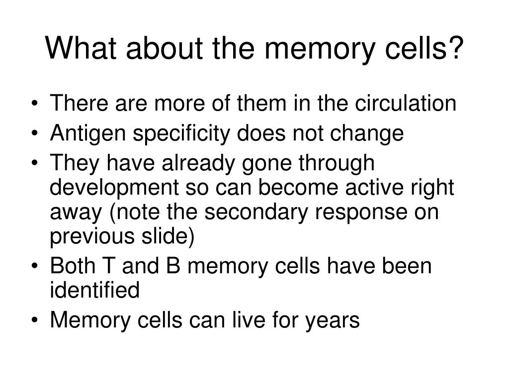 What about the memory cells?