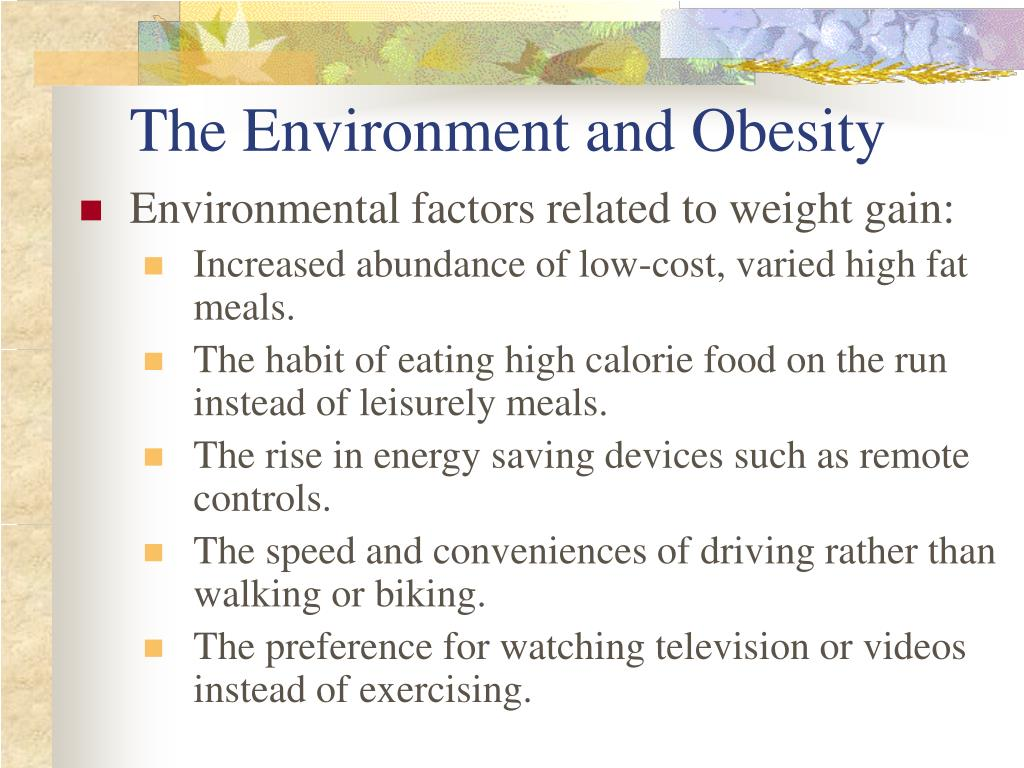 The Environment and Obesity