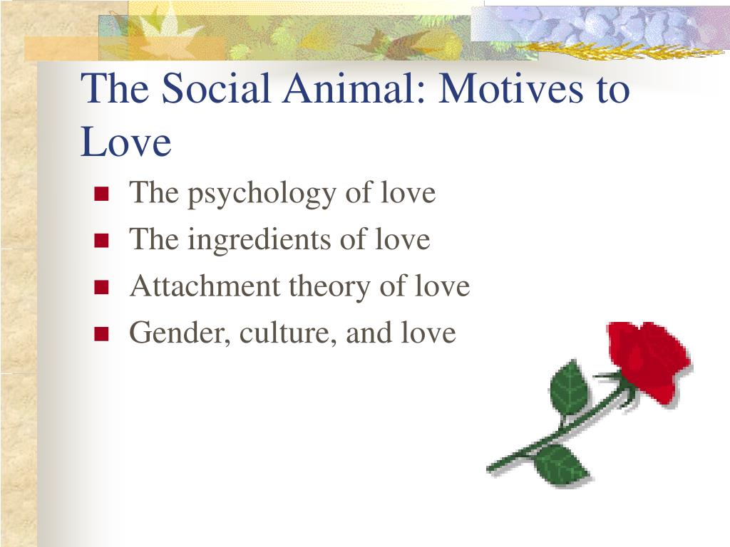 The Social Animal: Motives to Love