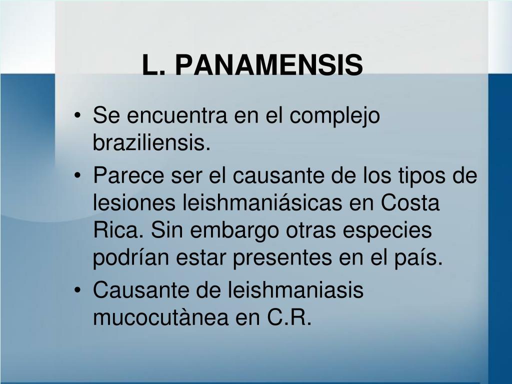 L. PANAMENSIS