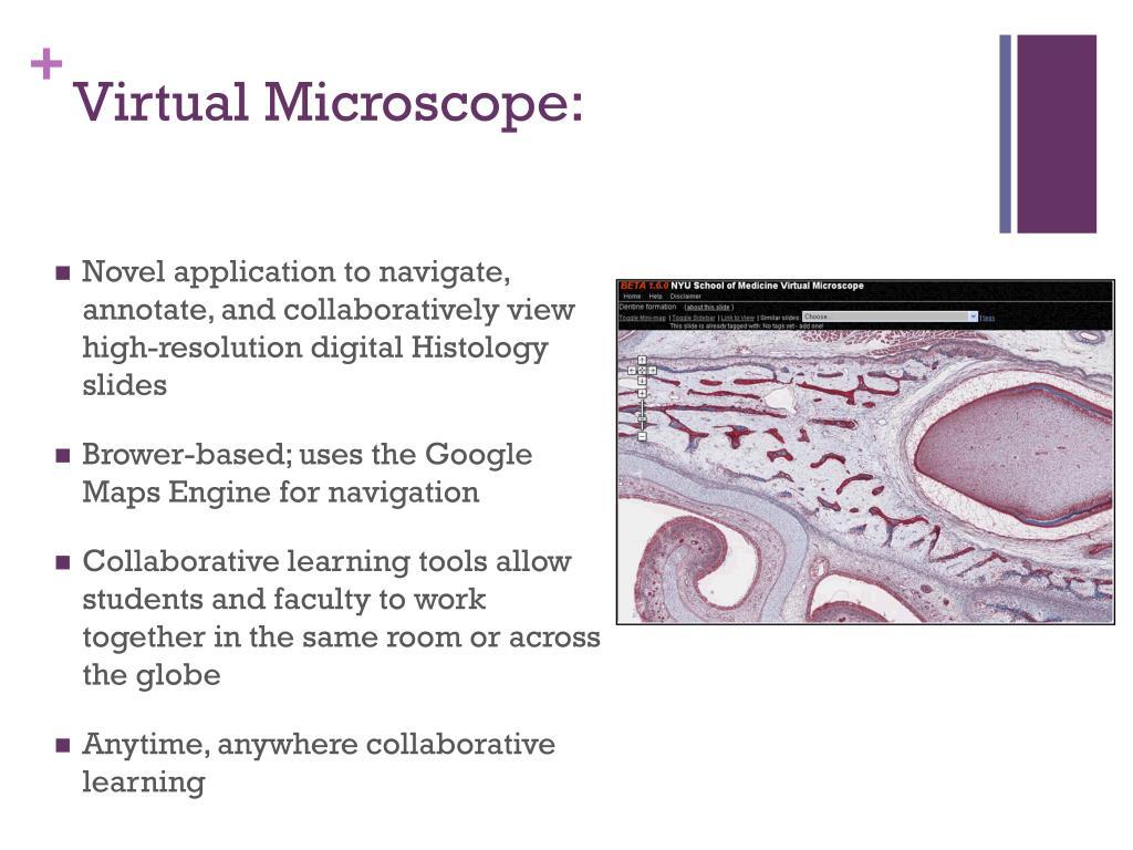 Virtual Microscope: