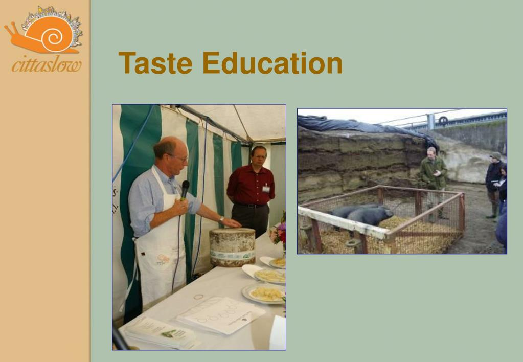 Taste Education