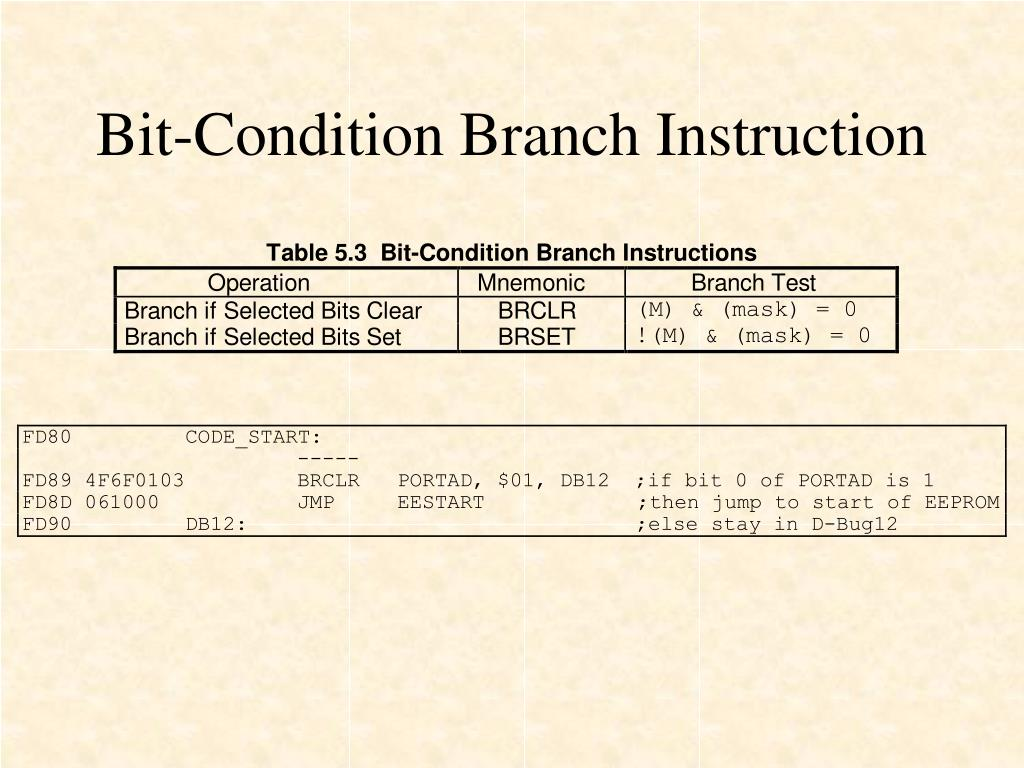 Bit-Condition Branch Instruction