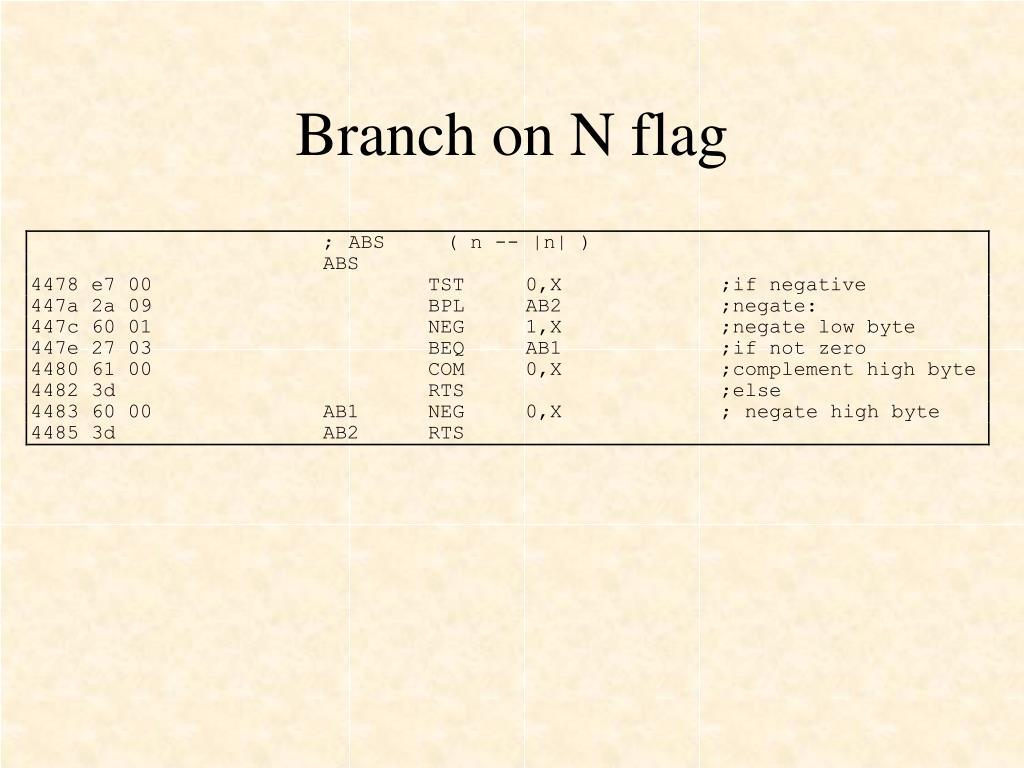 Branch on N flag