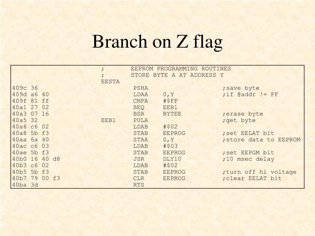 Branch on Z flag