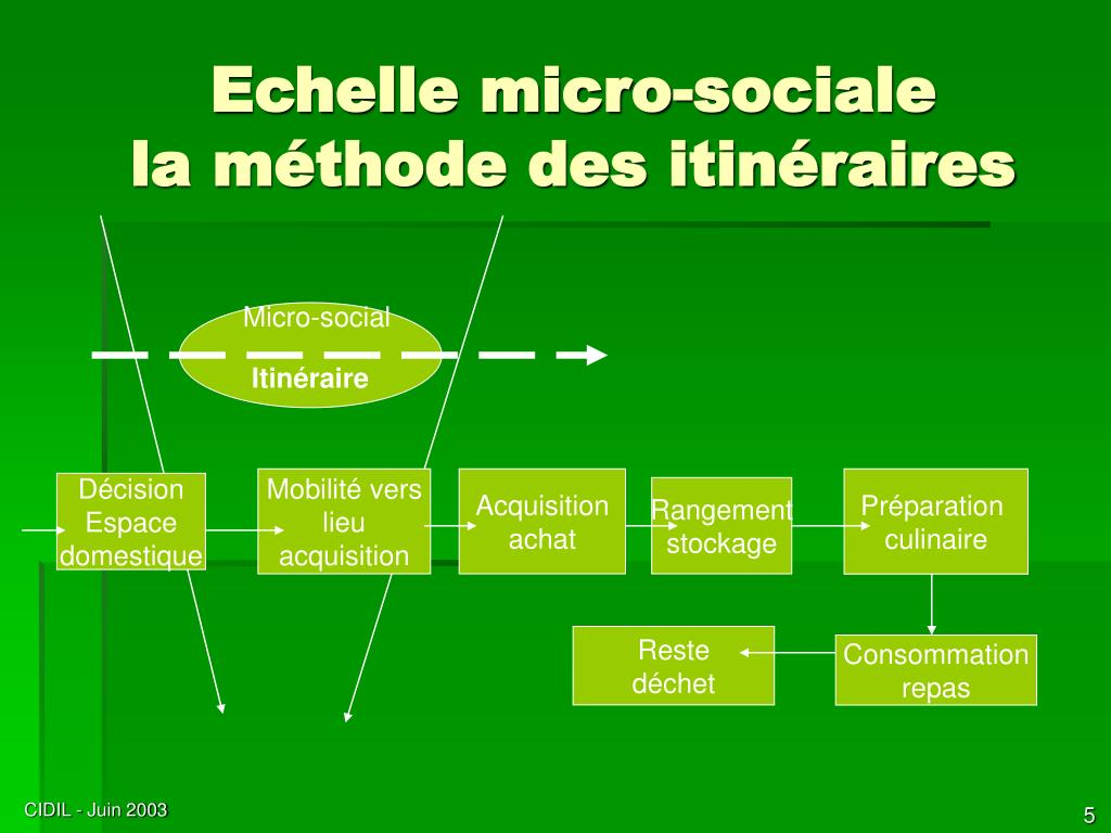 Echelle micro-sociale