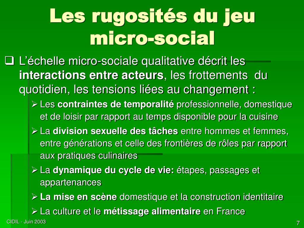 Les rugosités du jeu micro-social