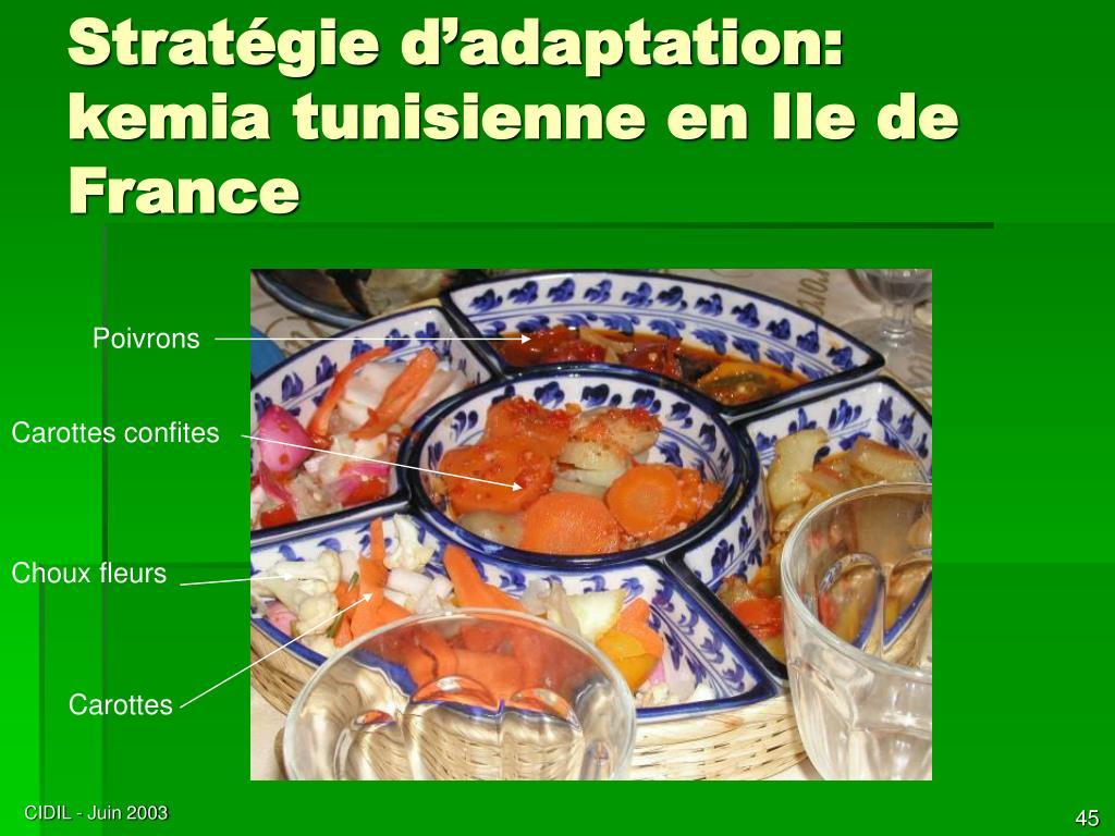 Stratégie d'adaptation: kemia tunisienne en Ile de France