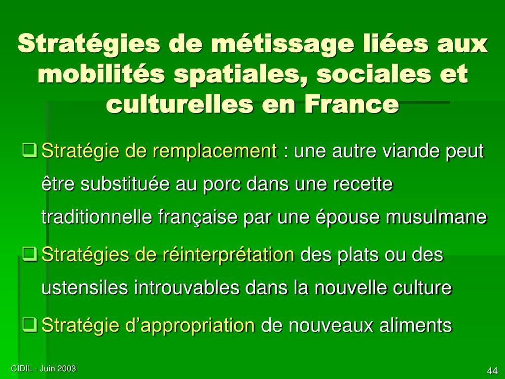 Stratégies de métissage liées aux mobilités spatiales, sociales et culturelles en France