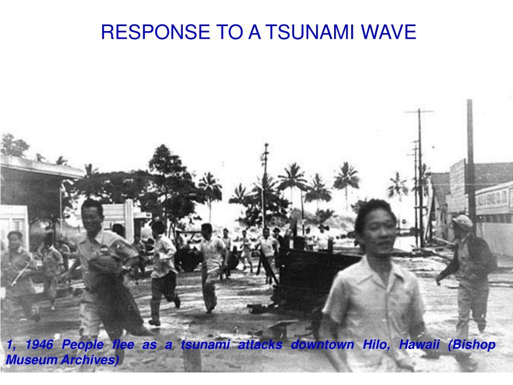 RESPONSE TO A TSUNAMI WAVE