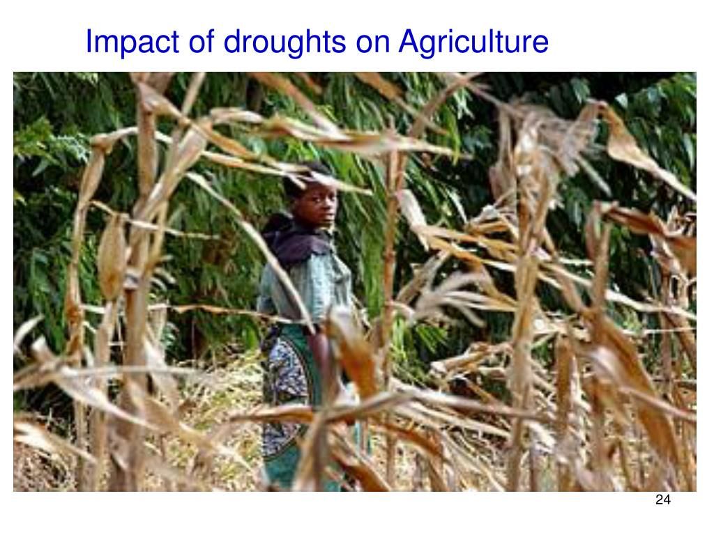 Impact of droughts on Agriculture