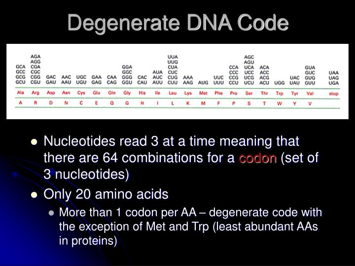 Degenerate DNA Code