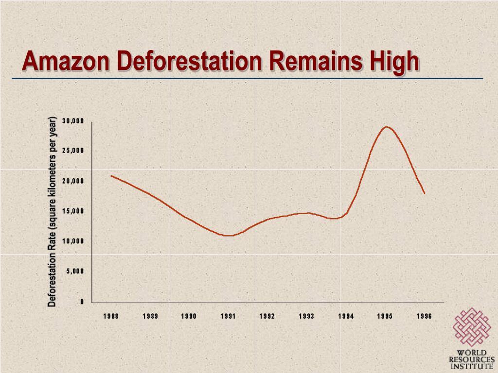 Amazon Deforestation Remains High